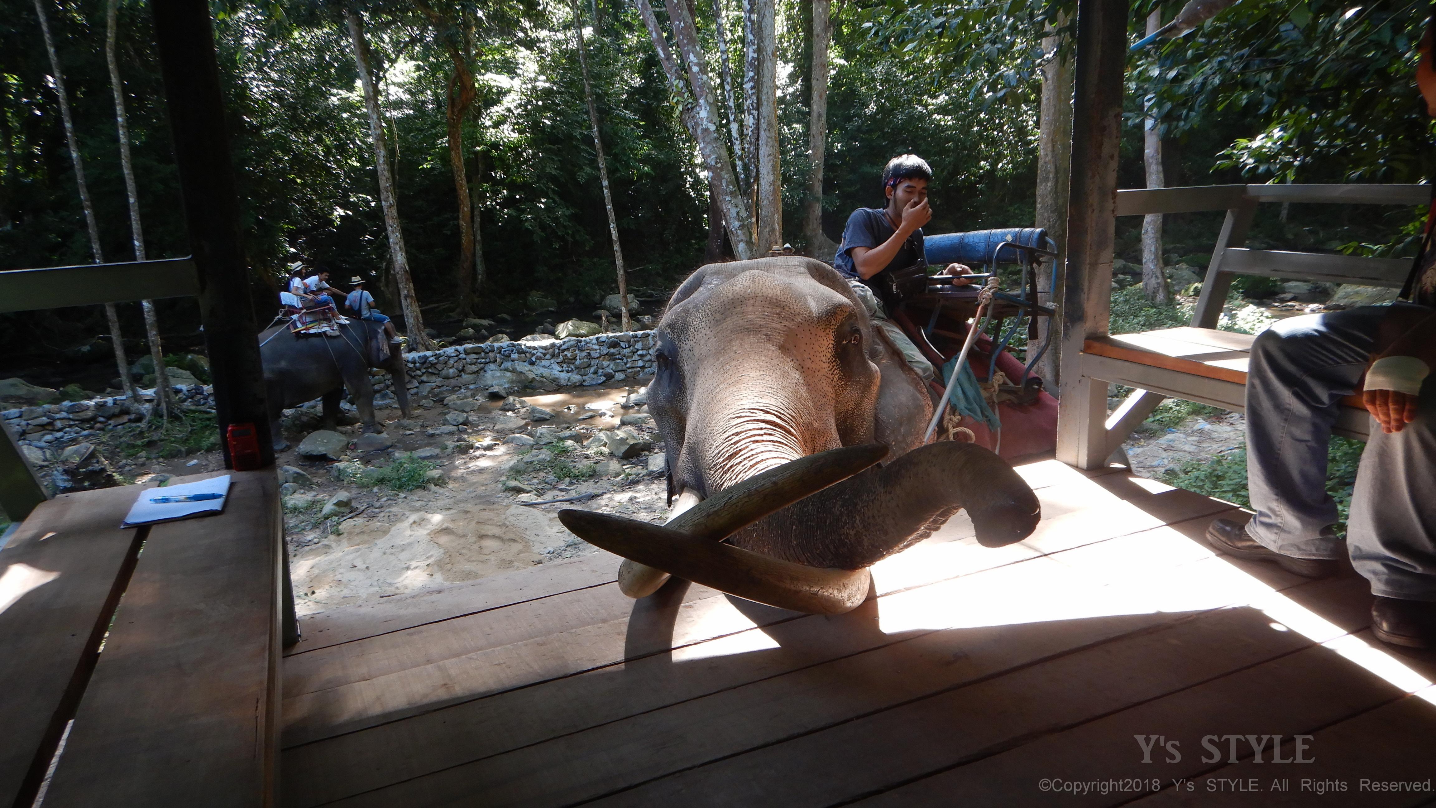 そして象に乗る